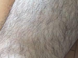 ケノン 長い毛